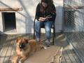 2019_02_28 Alsfeld Tiergestützte Leseförderung 03