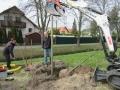2019_04_13-Kandel-Bäume-für-Brillen-02