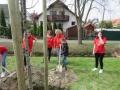 2019_04_13-Kandel-Bäume-für-Brillen-13