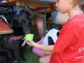 2019_06_30-Begegnungsstätte-Mensch-Hund-26